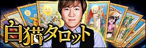 濱口善幸◆白猫タロット